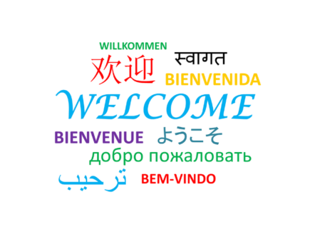 Modern languages in a primary school setting, oui ou non?